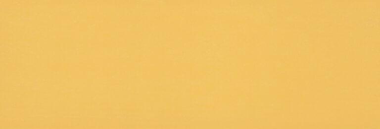 2205 Żółć Słoneczna