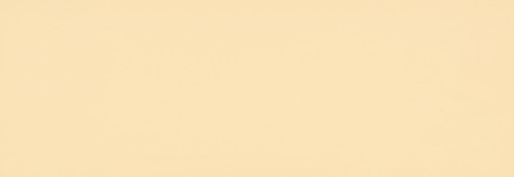 2204-Kość Słoniowa